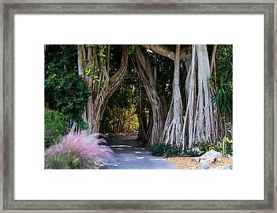 Selby Secret Garden 2 Framed Print