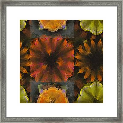 Seld Exposed Flowers  Id 16164-224201-40700 Framed Print by S Lurk