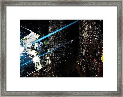 Self Reflect Framed Print by SeVen Sumet