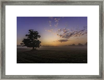 Self Reflection Framed Print by Everet Regal