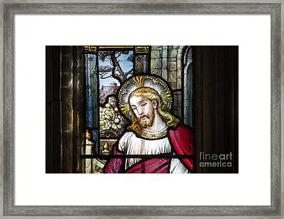 Selfless Framed Print by Tim Gainey