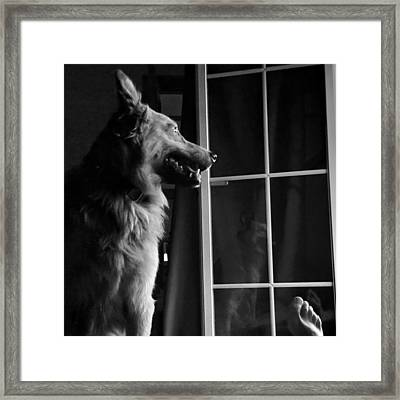 Selfportrait With Chuvak #dog #animal Framed Print