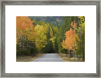 Selkirk Color Framed Print by Idaho Scenic Images Linda Lantzy