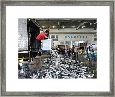 Framed Print featuring the photograph Selling Grey Mullet Fish In Taiwan by Yali Shi