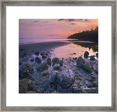 Semiahmoo Bay Framed Print by Tim Fitzharris