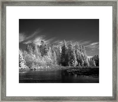 Semiahmoo River Framed Print