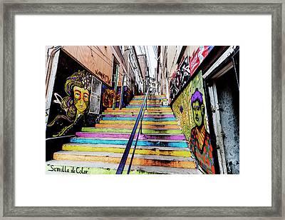 Semilla De Color Framed Print