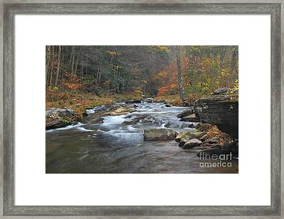 Seneca Creek Autumn Framed Print by Randy Bodkins