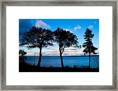 Seneca Lake Ny Framed Print by Tom Molczynski