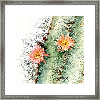 Senita Cactus Framed Print by Marilyn Smith