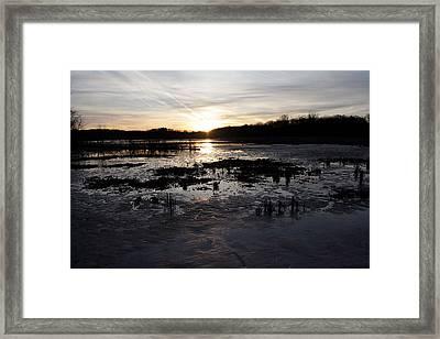 Sense Of Honour Framed Print by Mark  France