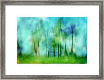 Sense Of Summer Framed Print