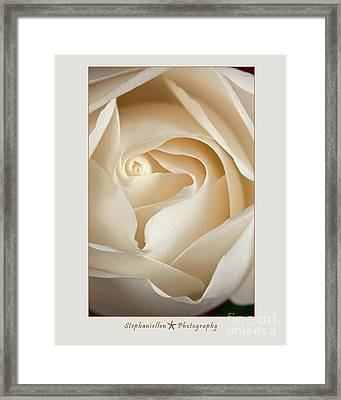 Sensual White Rose Framed Print