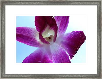 Sent From Heaven Framed Print by Krissy Katsimbras
