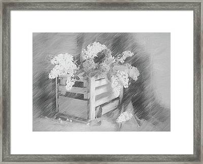 Sent To You With Love Black And White Framed Print by Georgiana Romanovna