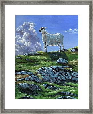 Sentinal Of The Highlands Framed Print