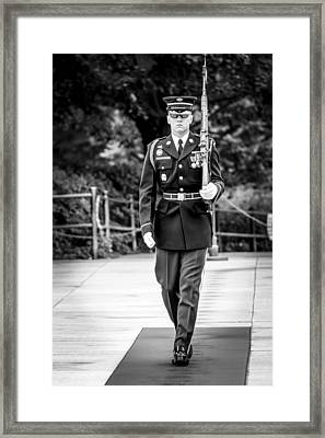 Sentinel At The Tomb Of The Unknowns Framed Print