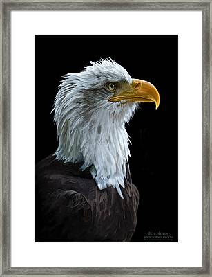 Framed Print featuring the digital art Sentinel by Bob Nolin
