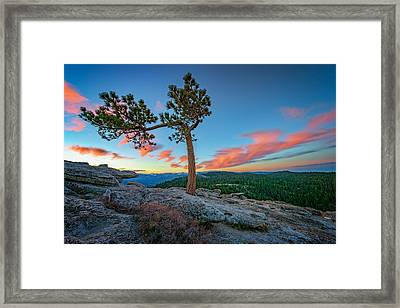 Sentinel Dawn Framed Print by Rick Berk