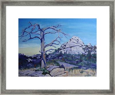 Sentinel Framed Print by Judy Fischer Walton