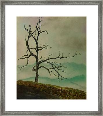 Sentinel Of The Shenandoah  Framed Print by Nicole Angell