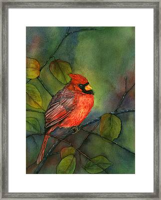 Sentinel Of The Woods Framed Print by Gladys Folkers
