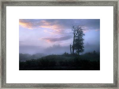 Framed Print featuring the photograph Sentinels In The Valley by Dan Jurak