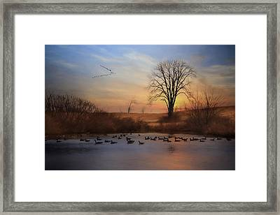 Sentinels Of Spring Framed Print by Lori Deiter