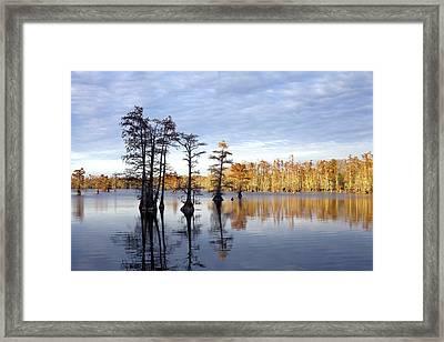 Sentinels Of The Lake Framed Print