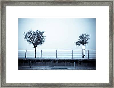 Separate Worlds Framed Print by Victoria Savostianova