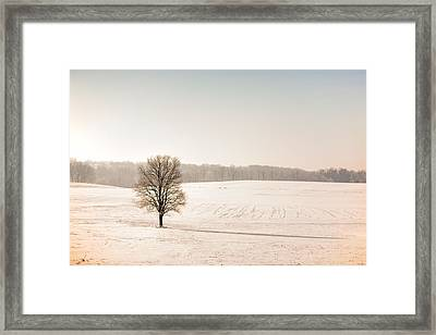 Seperated After The Storm Framed Print by Todd Klassy