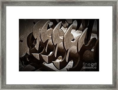 Sepia Blades Framed Print