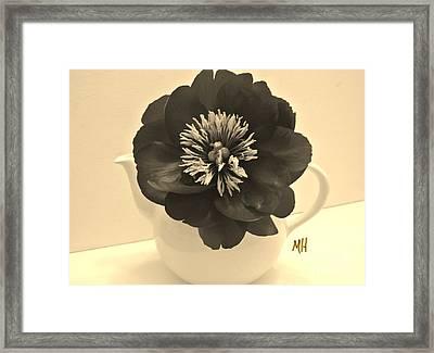 Sepia Peony In A Teapot Framed Print by Marsha Heiken