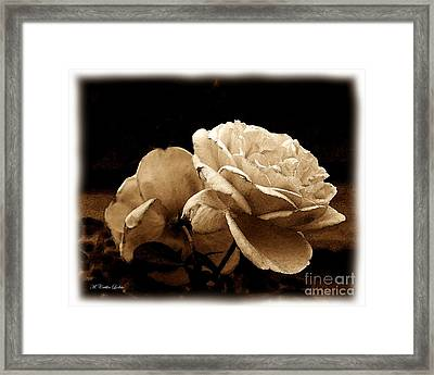Sepia Roses Framed Print by Caitlin Lodato