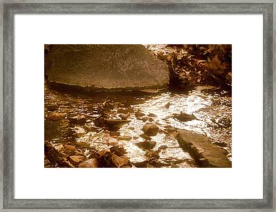 Sepia Sunlight Framed Print by Michael Putnam