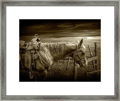 Sepia Tone Of Back At The Ranch Saddle Horse Framed Print