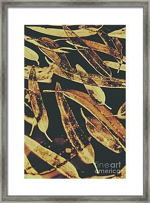 Sepia Toned Image Of Floating Eucalyptus Leaves Framed Print by Jorgo Photography - Wall Art Gallery