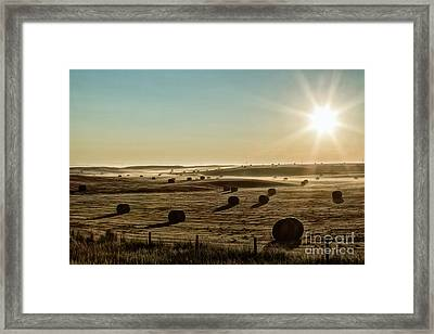 Framed Print featuring the photograph September Hay by Brad Allen Fine Art