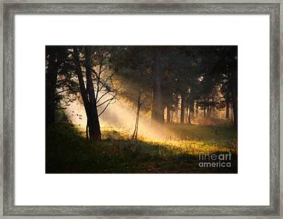 September Impressions Framed Print