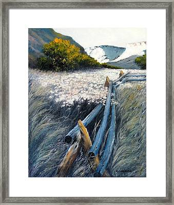 September Shadows Framed Print