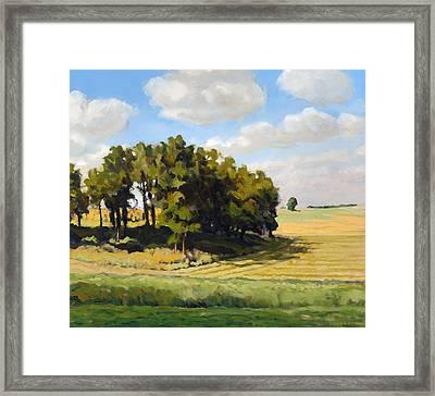 September Summer Framed Print by Bruce Morrison
