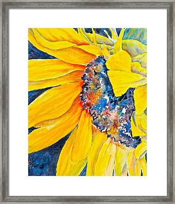 September Sunflower Framed Print