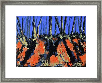 September's Symphony Framed Print by Donna Blackhall