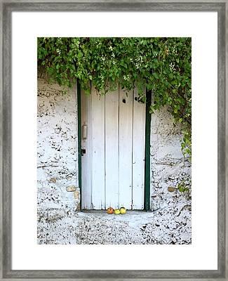 Serendipitous Door Framed Print
