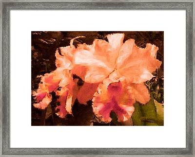 Serendipity Orchid Framed Print by Susan Maxwell Schmidt