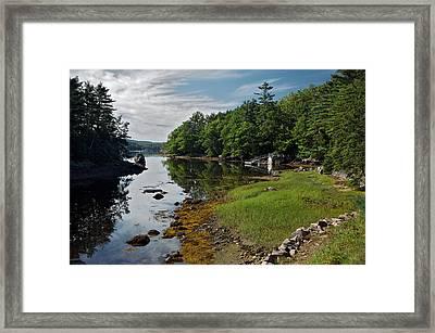 Serene Backyard Framed Print
