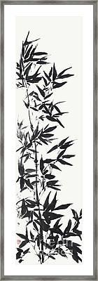 Serene Bamboo Framed Print by Nadja Van Ghelue