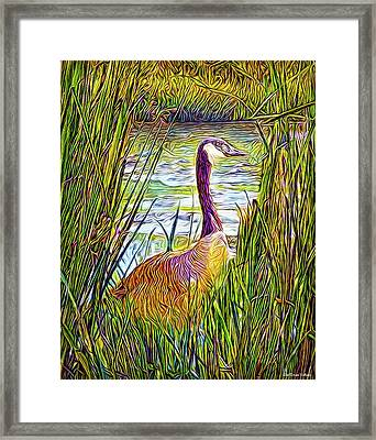 Serene Goose Dreams Framed Print