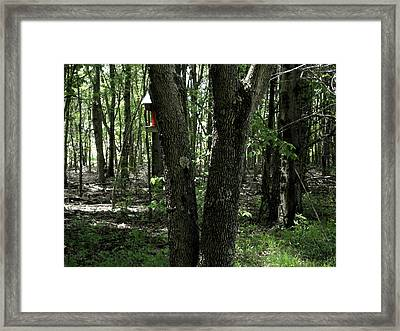 Framed Print featuring the photograph Serene In Green by Michelle Audas