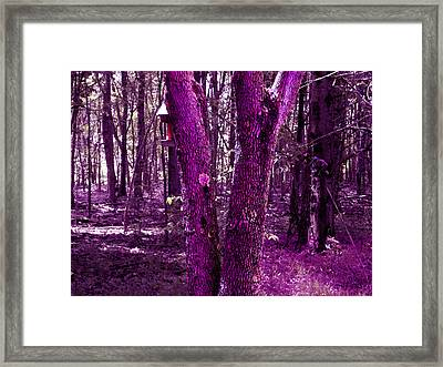 Framed Print featuring the photograph Serene In Purple by Michelle Audas